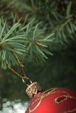 Het stuk speelgoed van Kerstmis op een tak van een bont-boom Stock Foto's