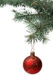 Het stuk speelgoed van Kerstmis op een tak van een bont-boom Royalty-vrije Stock Afbeeldingen