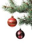 Het stuk speelgoed van Kerstmis op een tak van een bont-boom Stock Afbeelding