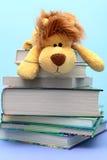 Het stuk speelgoed van kinderen ligt op de gecombineerde boeken Royalty-vrije Stock Foto