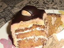 Het stuk van de chocoladecake Royalty-vrije Stock Afbeeldingen