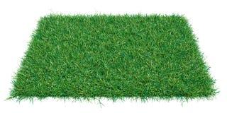 Het stuk van de modelrechthoek van groen gras Stock Afbeeldingen