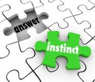 Het Stuk van het instinctraadsel vindt het Antwoord Raadselintuïtief gevoel Solut oplost stock illustratie