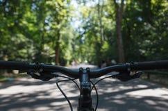 Het stuurstam van de bergfiets in het park Standpunt royalty-vrije stock afbeeldingen