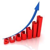 Het SUCCES van de tekst Stock Foto