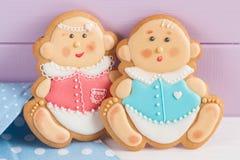 Het suikerglazuurkoekjes van de babydouche Stock Foto