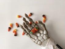 Het suikergoed van de skeletholding in zijn hand royalty-vrije stock afbeeldingen
