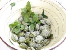 Het suikergoed van de thee in ceramische kop Stock Afbeelding
