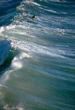 Het SURFEN Royalty-vrije Stock Afbeelding