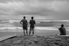 Het surfen in de Caraïben in D r royalty-vrije stock foto