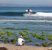 Het surfen in de oceaan stock fotografie