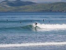Het surfen op de golf bij Morro-Rotsbaai stock afbeeldingen