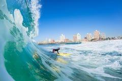 Het surfen van Badmeesterswaterskien Durban Royalty-vrije Stock Fotografie