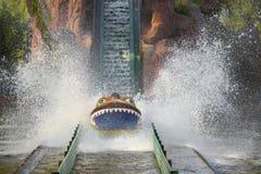 Het Surfen van het water Royalty-vrije Stock Fotografie