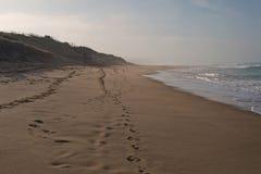 Het surfen van strand in schemer royalty-vrije stock fotografie