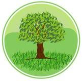 Het symbool van de ecologie Royalty-vrije Stock Foto's