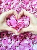 Het symbool van de hartliefde Stock Foto's