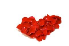 Het symbool van het hart dat met de rode rozenbloemblaadjes wordt gemaakt stock afbeelding