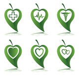 Het symbool van het hart in groene bladeren Stock Foto