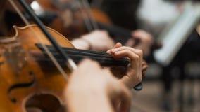 Het symfonieoverleg, een mens die de cello spelen, overhandigt dicht omhoog stock videobeelden
