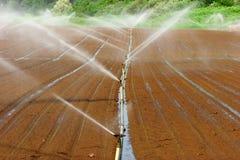 Het systeem van de irrigatie Royalty-vrije Stock Foto's