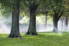 Het systeem van de irrigatie Royalty-vrije Stock Afbeeldingen