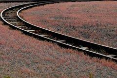 Het systeem van de spoorweg Royalty-vrije Stock Afbeeldingen