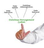 Het systeem van het gegevensbestandbeheer Stock Foto's