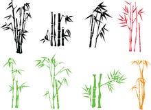 Het takje van het bamboe Royalty-vrije Stock Fotografie