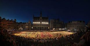Het tapijt van de bloem in Brussel, België Stock Afbeeldingen