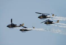 Het team van de de helikoptermanifestatie van het Leger van de V.S. Stock Foto