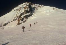Het team van de kabel van klimmers Royalty-vrije Stock Foto's