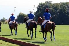 Het teamopstelling van het polo Stock Foto