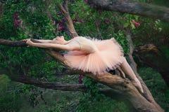 Het tedere en romantische ballerina ontspannen in bloementuin Stock Foto's