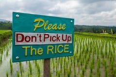Het teken die rijst in padievelden beschermen royalty-vrije stock fotografie