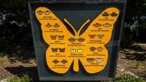 Het Teken die van de vlinderinformatie 24 Soorten Vlindernamen tonen stock foto's