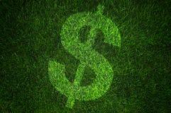 Het teken van de dollar op gras Stock Afbeeldingen