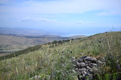 Het teken van de evangeliesleep, die door platteland van Galilee in Israël, na sleep van Jesus in de Lente wandelen stock fotografie