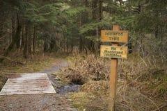 Het teken van de Iditarodsleep stock foto