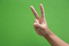 Het teken van de V-vormhand voor het stemmen van over campagne Stock Foto