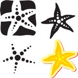Het teken van de zeester. Overzeese ster Stock Afbeelding