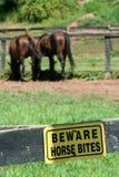Het teken van het paardbeten van Beware royalty-vrije stock foto