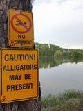 Het teken zegt Geen Zwemmende Voorzichtigheidsalligators royalty-vrije stock afbeelding