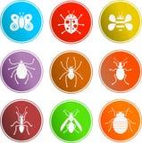 Het tekenpictogrammen van het insect vector illustratie