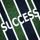 Het tekensymbool van het succes Stock Afbeeldingen