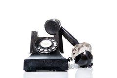 Het telefoneren van de muis Royalty-vrije Stock Afbeeldingen