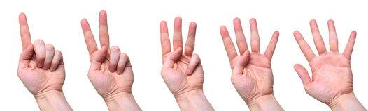 Het tellen van handen Stock Fotografie