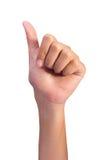 Het tellende aantal van de de linkerhandenvinger van de vrouw Royalty-vrije Stock Foto