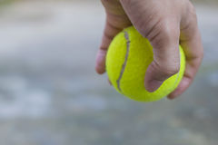 Het tennisbal van de mensenholding Royalty-vrije Stock Foto