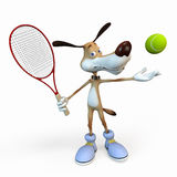 Het tennisspeler van de hond. Stock Afbeeldingen